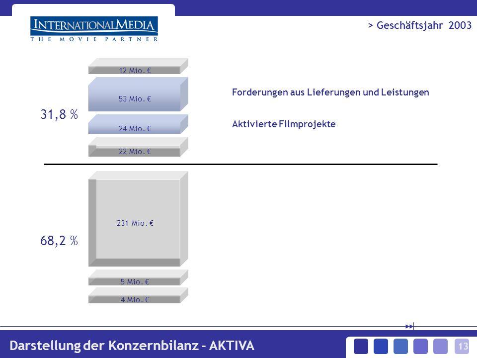 13 > Geschäftsjahr 2003 Darstellung der Konzernbilanz - AKTIVA 12 Mio.