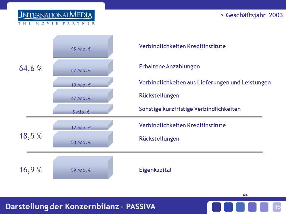 15 > Geschäftsjahr 2003 Darstellung der Konzernbilanz - PASSIVA 95 Mio.
