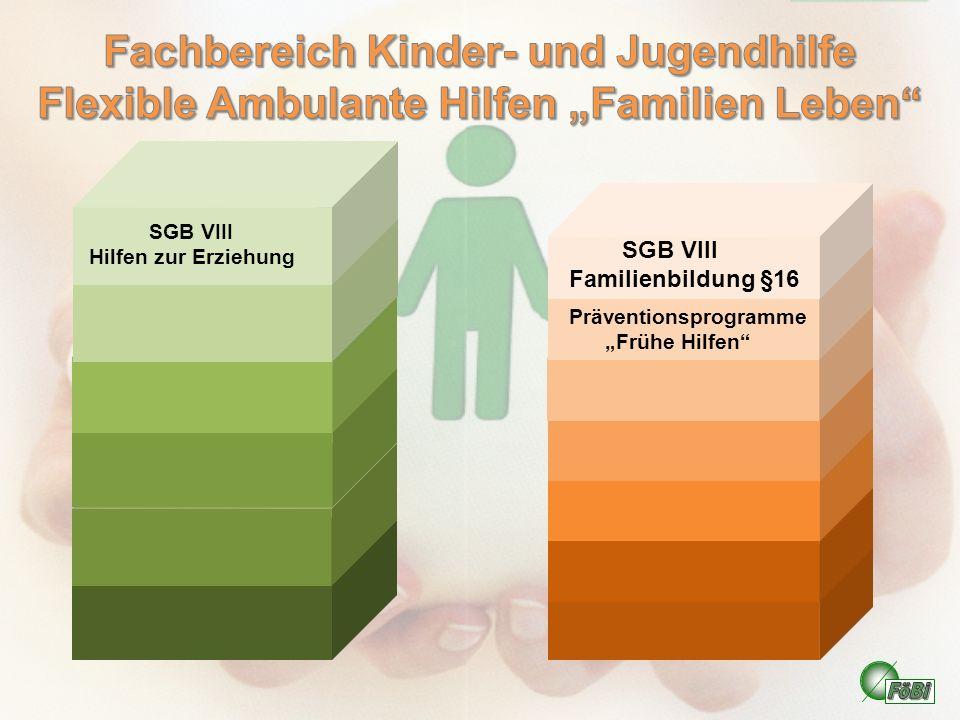 SGB VIII Hilfen zur Erziehung Präventionsprogramme Frühe Hilfen SGB VIII Familienbildung §16