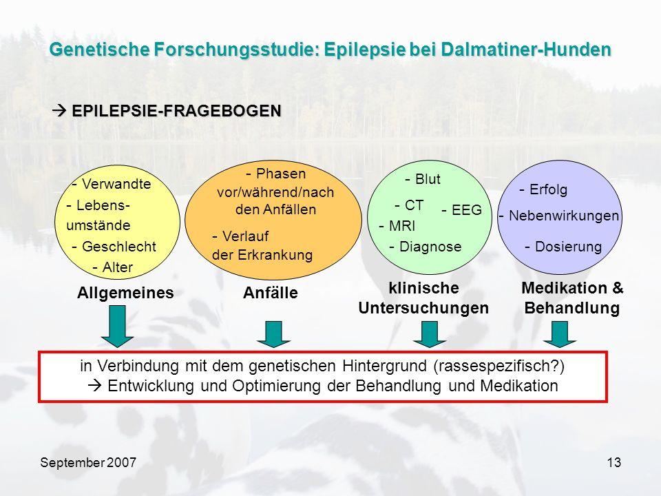 September 200713 - Alter - Geschlecht - Verwandte - Verlauf der Erkrankung - Phasen vor/während/nach den Anfällen klinische Untersuchungen Medikation