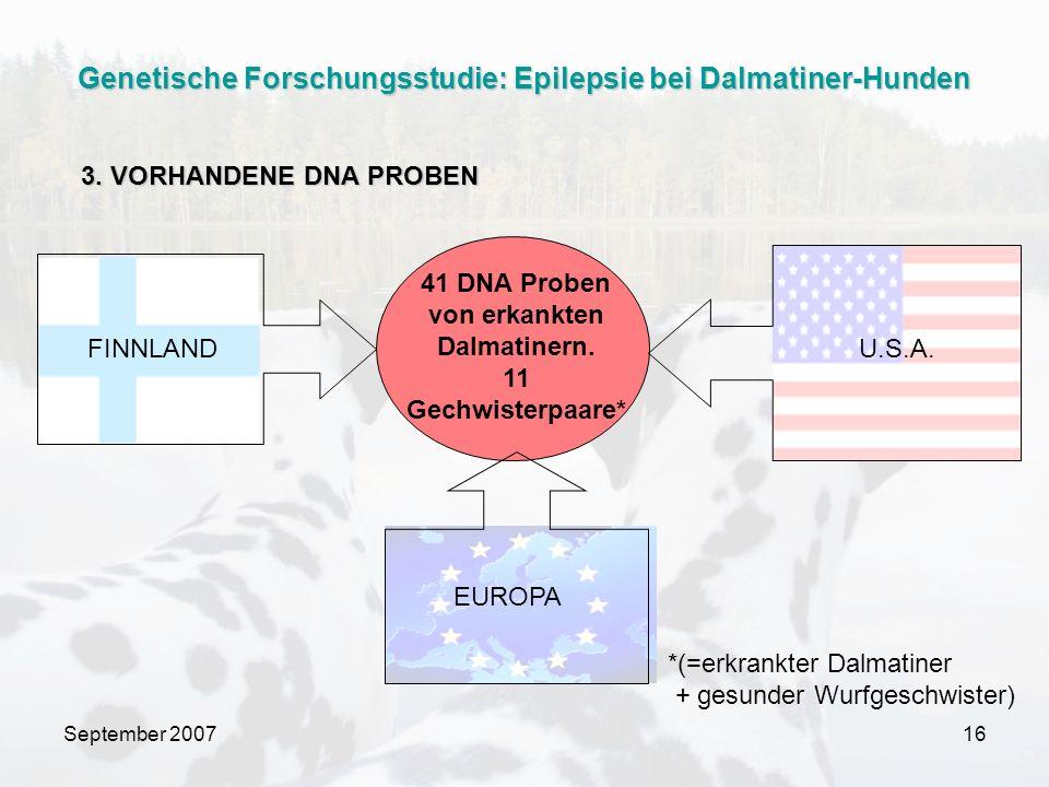 September 200716 41 DNA Proben von erkankten Dalmatinern. 11 Gechwisterpaare* FINNLANDU.S.A. *(=erkrankter Dalmatiner + gesunder Wurfgeschwister) 3. V