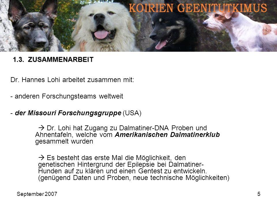 September 20075 Dr. Hannes Lohi arbeitet zusammen mit: - anderen Forschungsteams weltweit - der Missouri Forschungsgruppe (USA) Dr. Lohi hat Zugang zu