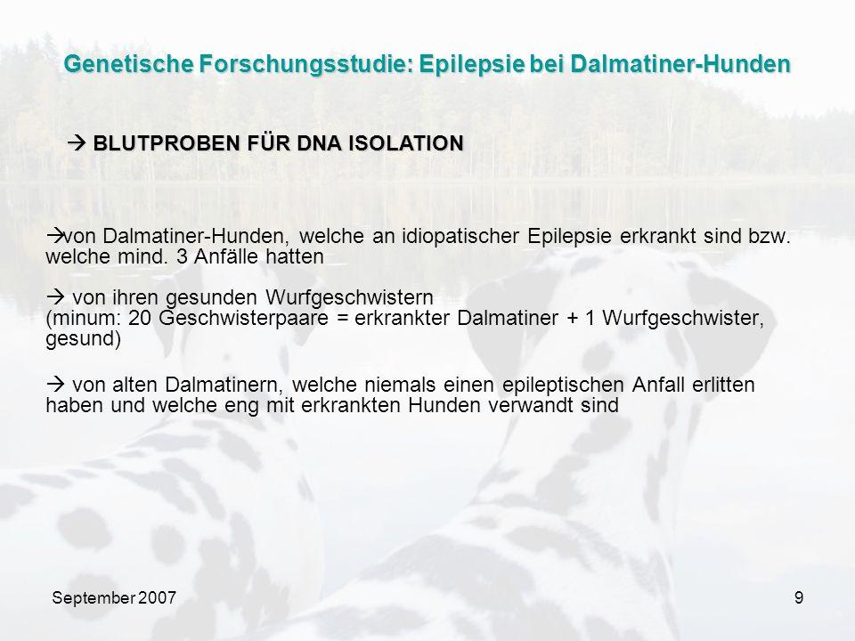 September 20079 von Dalmatiner-Hunden, welche an idiopatischer Epilepsie erkrankt sind bzw. welche mind. 3 Anfälle hatten von ihren gesunden Wurfgesch