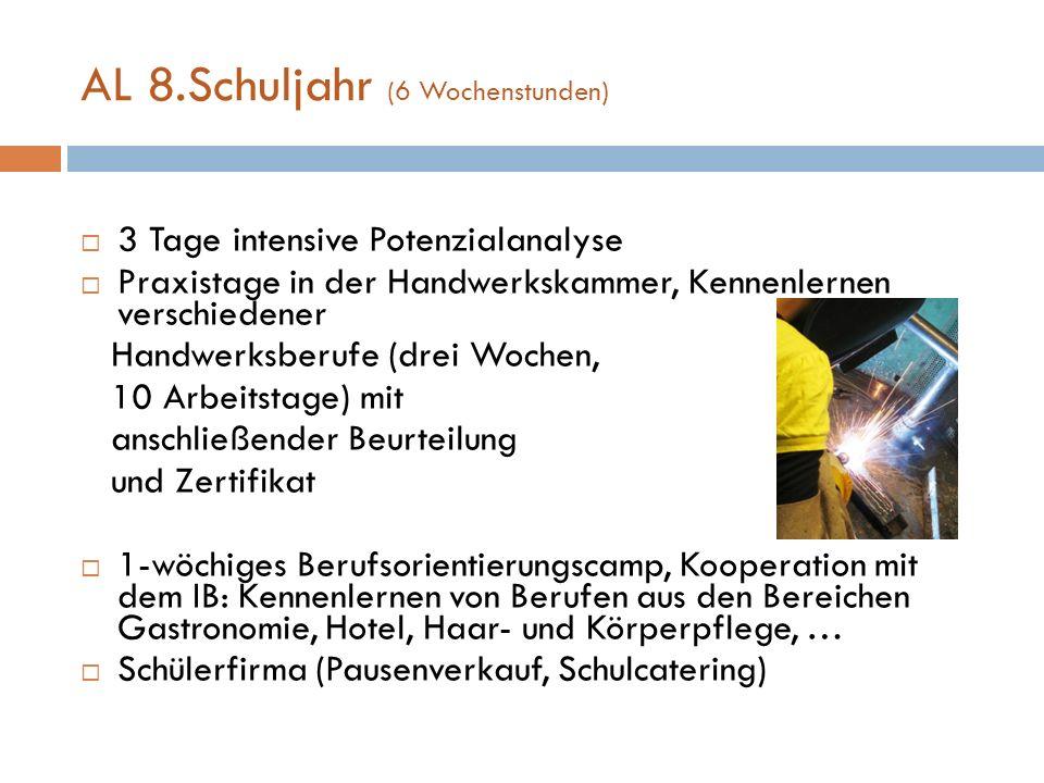 AL 8.Schuljahr (6 Wochenstunden) 3 Tage intensive Potenzialanalyse Praxistage in der Handwerkskammer, Kennenlernen verschiedener Handwerksberufe (drei