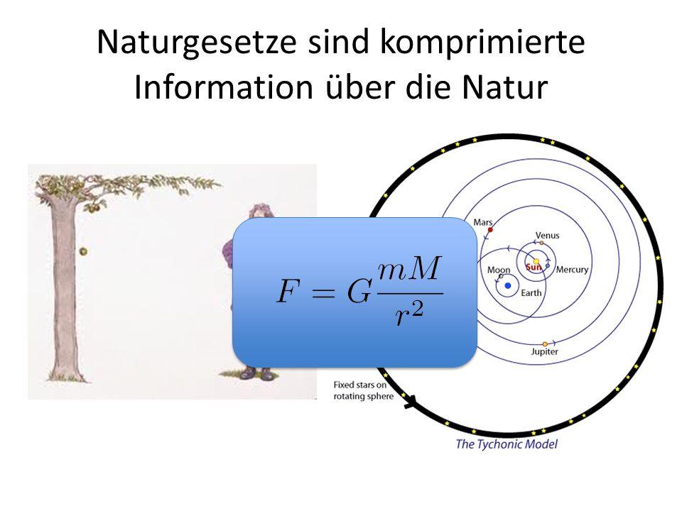 Naturgesetze sind komprimierte Information über die Natur
