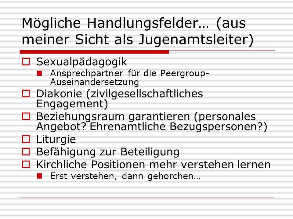 Mögliche Handlungsfelder… (aus meiner Sicht als Jugenamtsleiter) Sexualpädagogik Ansprechpartner für die Peergroup- Auseinandersetzung Diakonie (zivil
