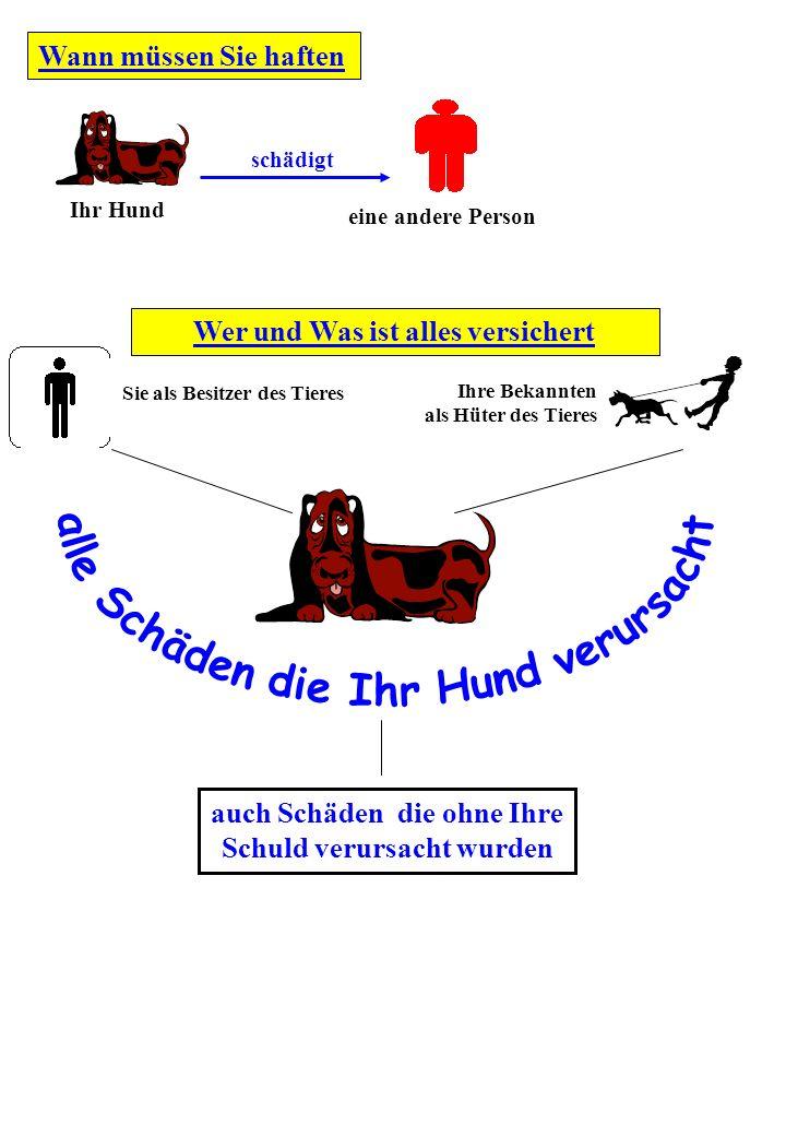 Wer und Was ist alles versichert Wann müssen Sie haften Ihr Hund schädigt eine andere Person Sie als Besitzer des Tieres Ihre Bekannten als Hüter des Tieres auch Schäden die ohne Ihre Schuld verursacht wurden