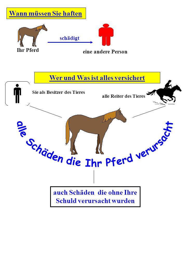 Wer und Was ist alles versichert Wann müssen Sie haften Ihr Pferd schädigt eine andere Person Sie als Besitzer des Tieres alle Reiter des Tieres auch Schäden die ohne Ihre Schuld verursacht wurden