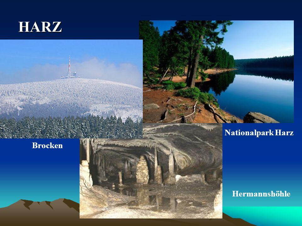 HARZ Nationalpark Harz Brocken Hermannshöhle