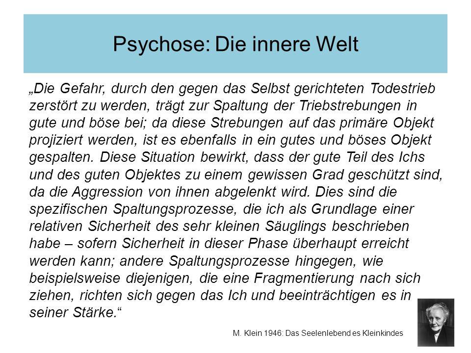 Psychose: Die innere Welt M. Klein 1946: Das Seelenlebend es Kleinkindes Die Gefahr, durch den gegen das Selbst gerichteten Todestrieb zerstört zu wer