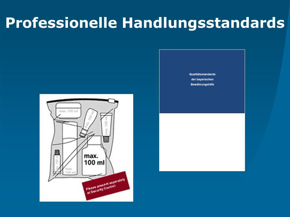 Prof. Dr. Ralf Bohrhardt Hochschule Coburg Professionelle Handlungsstandards