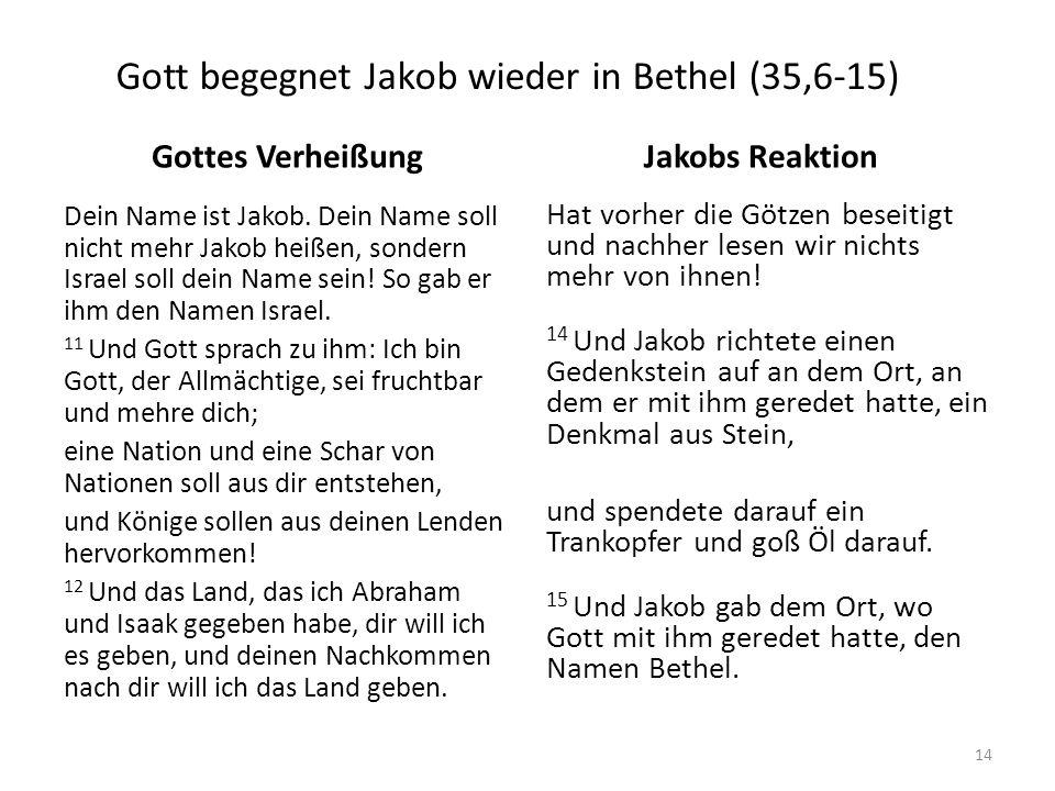 Gott begegnet Jakob wieder in Bethel (35,6-15) Gottes Verheißung Dein Name ist Jakob. Dein Name soll nicht mehr Jakob heißen, sondern Israel soll dein