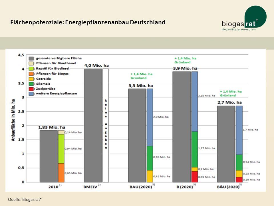 Flächenpotenziale: Energiepflanzenanbau Deutschland Quelle: Biogasrat +