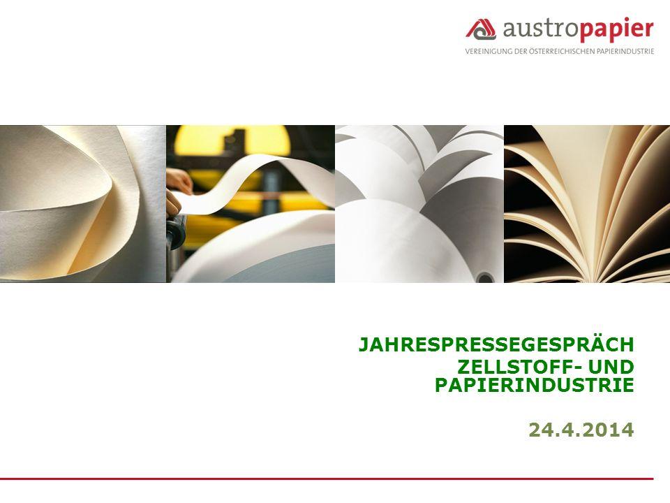 12 Seit 2005 stiegen die Holzbezugskosten der Zellstoff- und Papierindustrie um 68%, gemessen am Durchschnittspreis je Festmeter frei Werk.