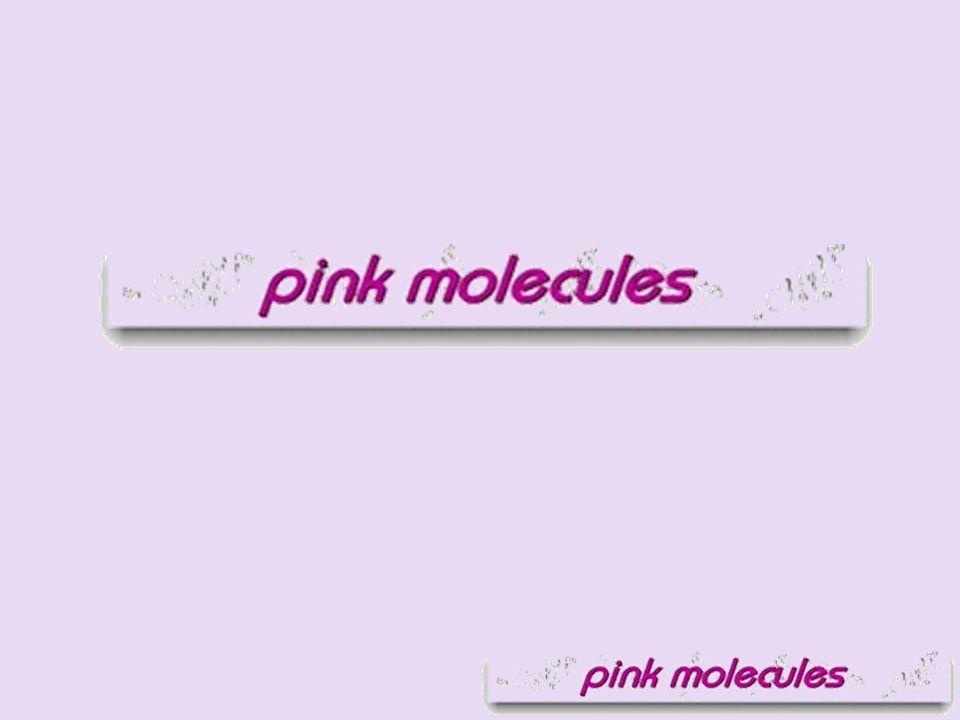 Pink Molecules, die in Basel beheimatete und gesamtschweizerisch tätige Orga- nisation setzt sich für die Anliegen der homo-, bi- und transsexuellen Angestell- ten der chemisch-pharmazeutischen In- dustrie ein.