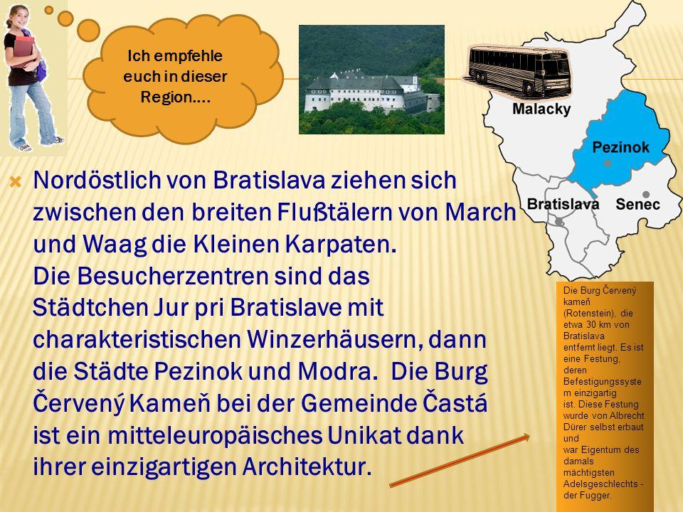 Nordöstlich von Bratislava ziehen sich zwischen den breiten Flußtälern von March und Waag die Kleinen Karpaten. Die Besucherzentren sind das Städtchen