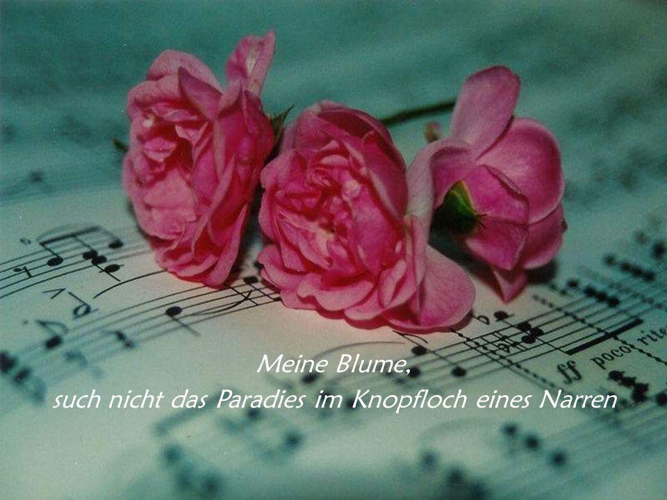 Die erste Blume, die auf Erden erblühte, war eine Aufforderung an das noch ungeborene Lied