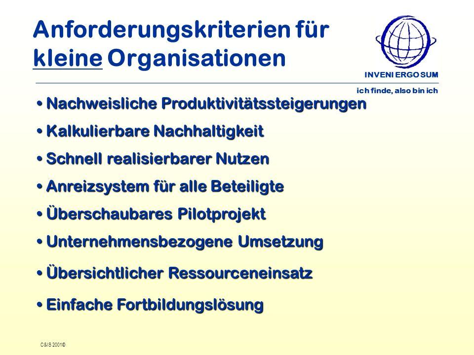INVENI ERGO SUM ich finde, also bin ich C&IS 2001© Anforderungskriterien für kleine Organisationen Nachweisliche Produktivitätssteigerungen Nachweisli