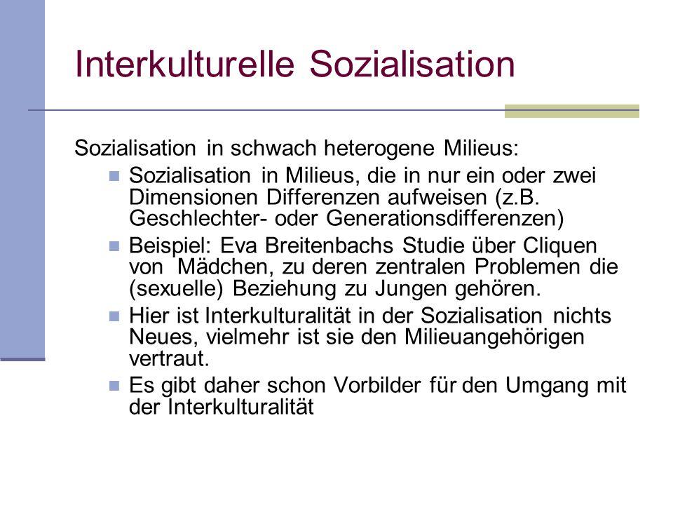 Interkulturelle Sozialisation Sozialisation in schwach heterogene Milieus Sozialisation in ausgeprägt heterogene Milieus
