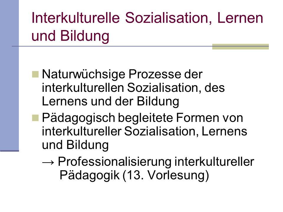 Interkulturelle Bildung Individuelle Bildungsprozesse (Bildung eines Jugendlichen) Kollektive Bildungsprozesse (Bsp.: Bildung einer Generation)
