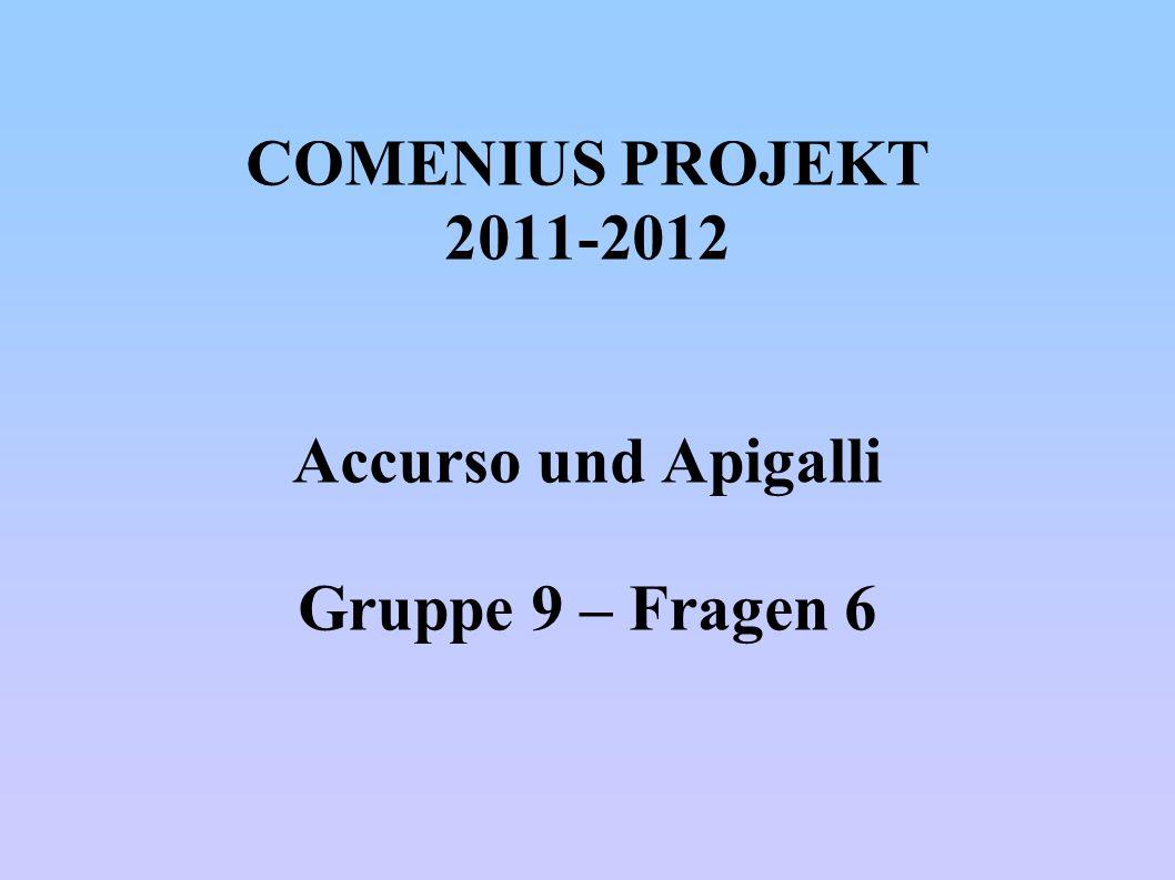 COMENIUS PROJEKT 2011-2012 Accurso und Apigalli Gruppe 9 – Fragen 6