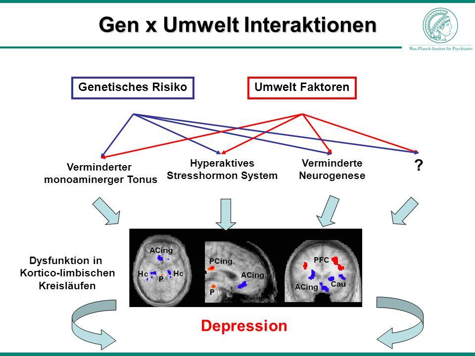Verminderter monoaminerger Tonus Hyperaktives Stresshormon System Verminderte Neurogenese Genetisches RisikoUmwelt Faktoren Depression ? Dysfunktion i