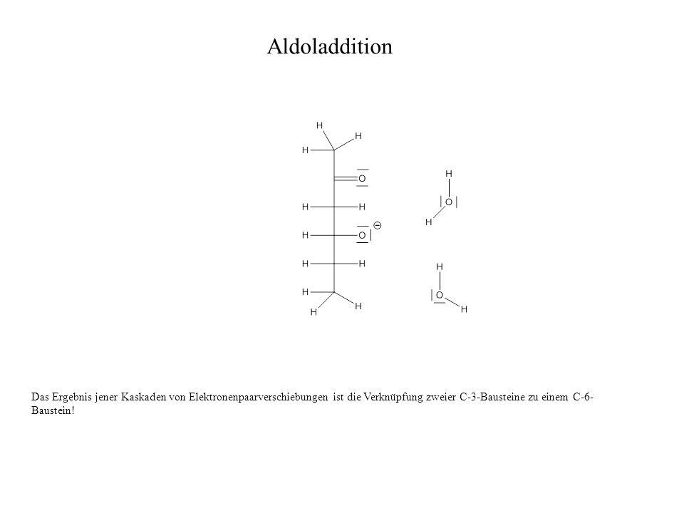 Das Ergebnis jener Kaskaden von Elektronenpaarverschiebungen ist die Verknüpfung zweier C-3-Bausteine zu einem C-6- Baustein! Aldoladdition
