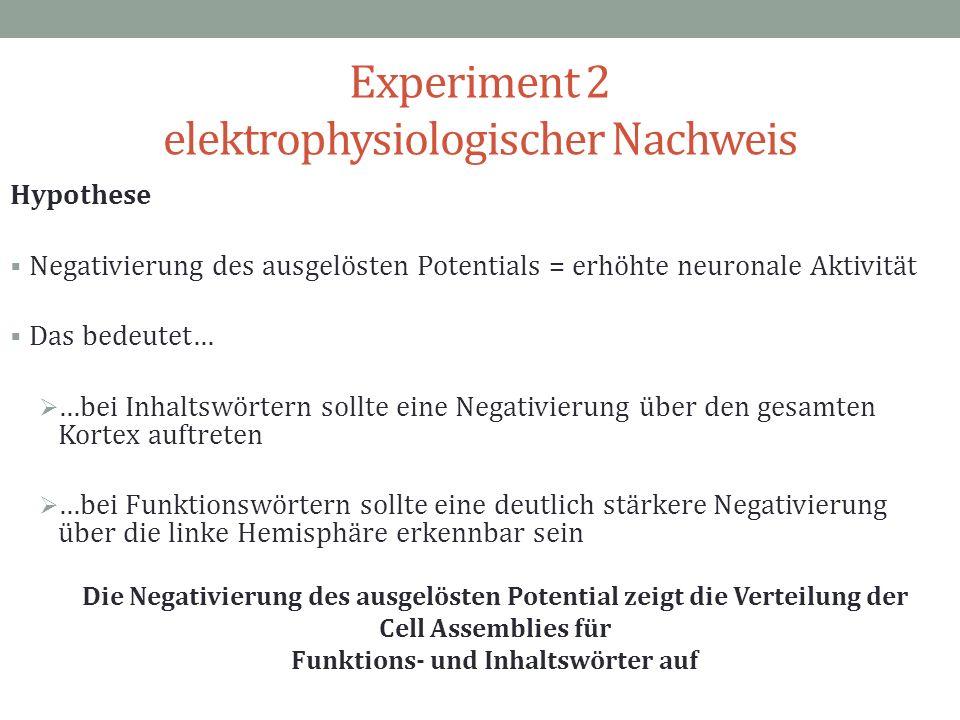 Experiment 2 elektrophysiologischer Nachweis Hypothese Negativierung des ausgelösten Potentials = erhöhte neuronale Aktivität Das bedeutet… …bei Inhal
