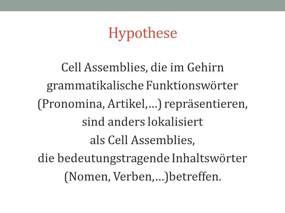 Hypothese Cell Assemblies, die im Gehirn grammatikalische Funktionswörter (Pronomina, Artikel,…) repräsentieren, sind anders lokalisiert als Cell Asse