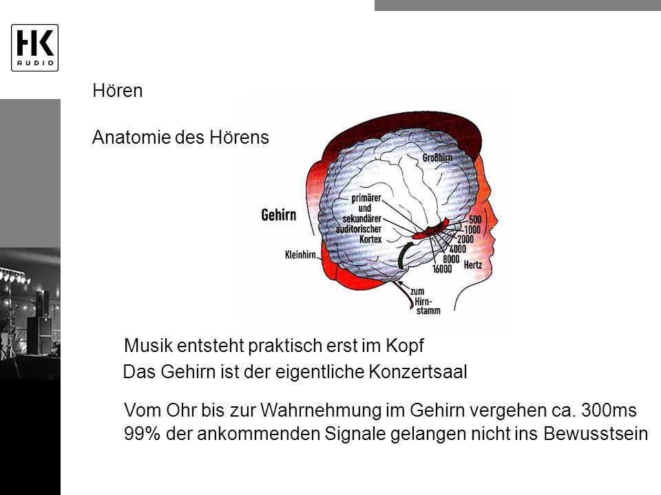 Anatomie des Hörens Musik entsteht praktisch erst im Kopf Das Gehirn ist der eigentliche Konzertsaal Vom Ohr bis zur Wahrnehmung im Gehirn vergehen ca