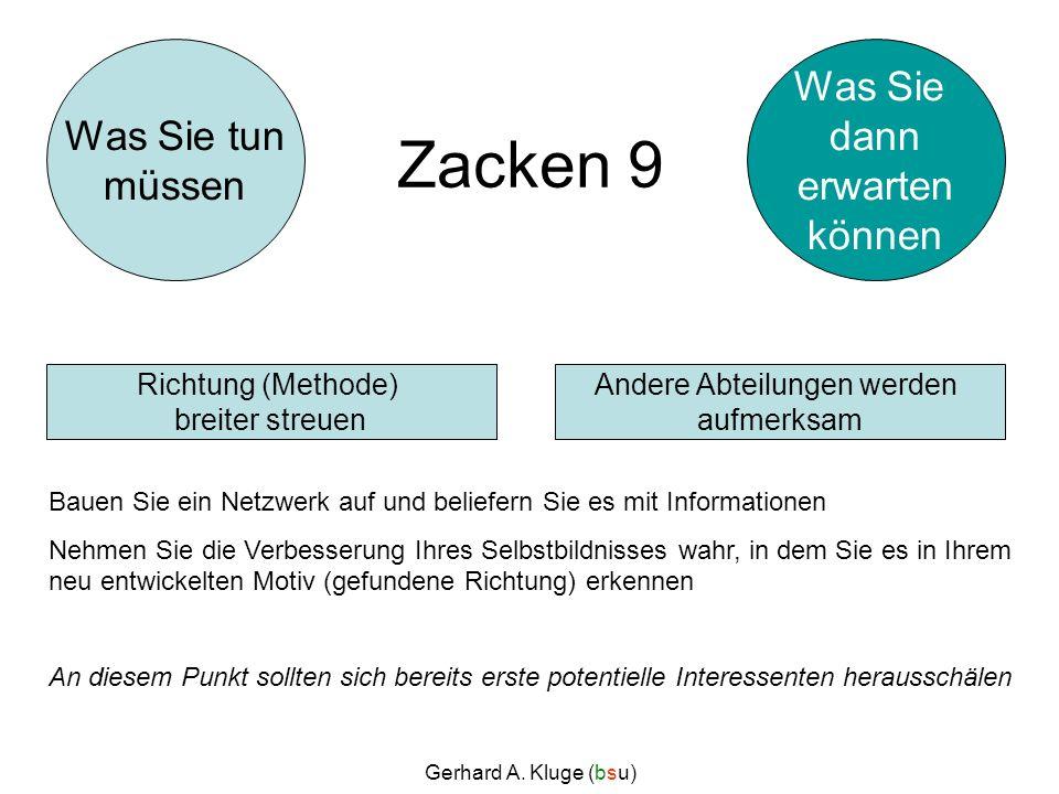 Gerhard A. Kluge (bsu) Zacken 9 Bauen Sie ein Netzwerk auf und beliefern Sie es mit Informationen Nehmen Sie die Verbesserung Ihres Selbstbildnisses w