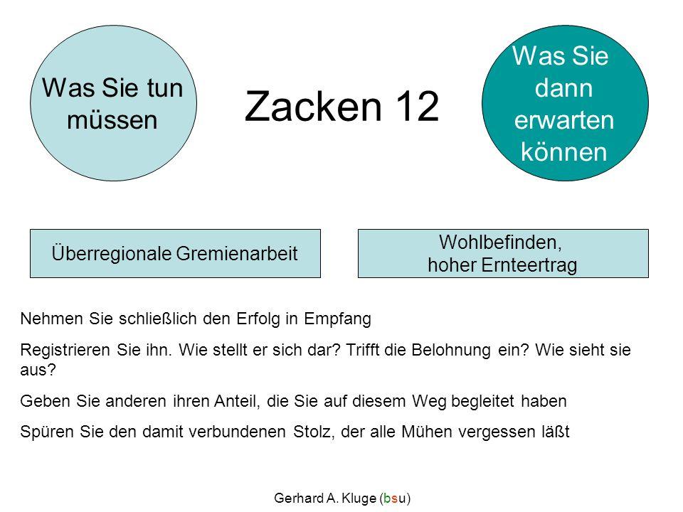 Gerhard A. Kluge (bsu) Zacken 12 Nehmen Sie schließlich den Erfolg in Empfang Registrieren Sie ihn. Wie stellt er sich dar? Trifft die Belohnung ein?