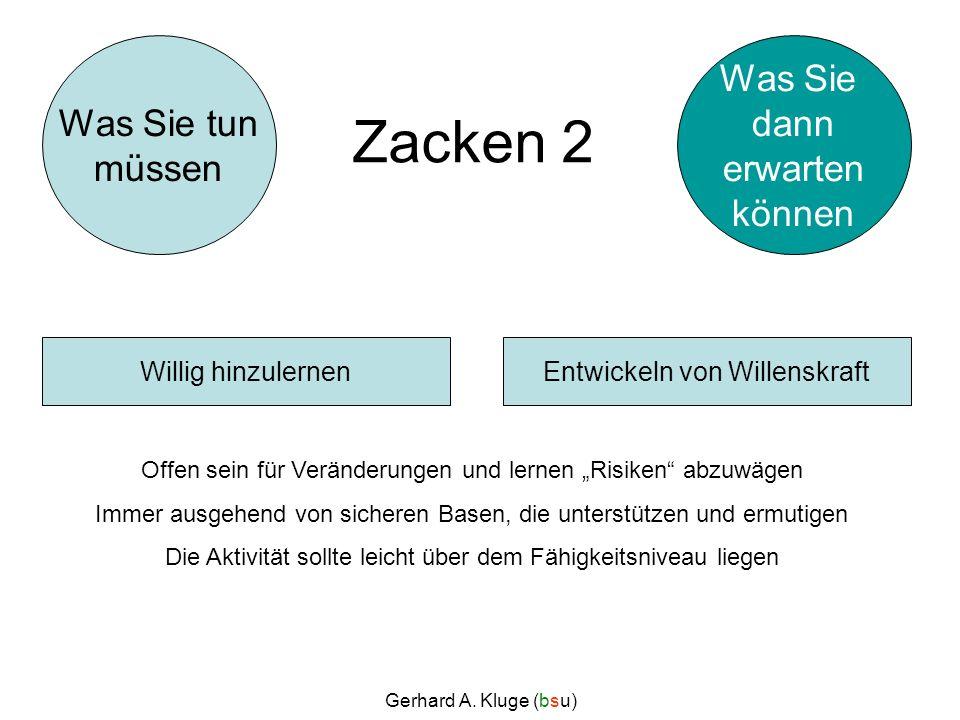 Gerhard A. Kluge (bsu) Zacken 2 Offen sein für Veränderungen und lernen Risiken abzuwägen Immer ausgehend von sicheren Basen, die unterstützen und erm