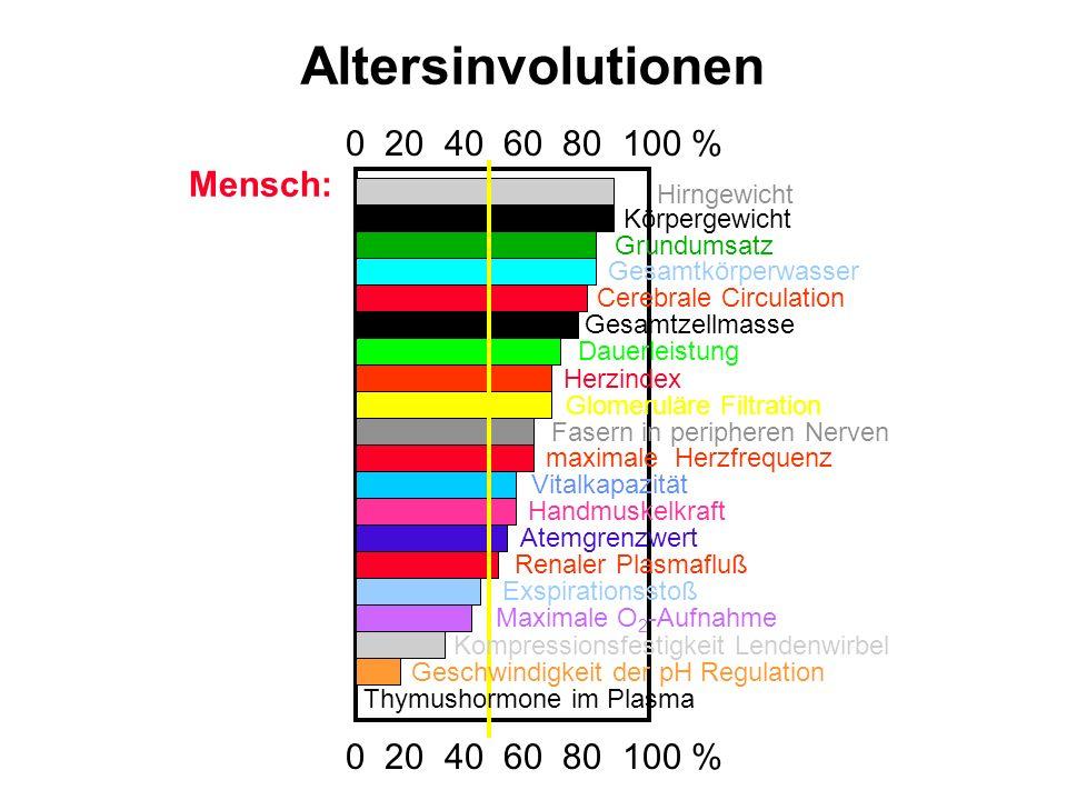 Altersinvolutionen 0 20 40 60 80 100 % Hirngewicht Körpergewicht Grundumsatz Gesamtkörperwasser Cerebrale Circulation Gesamtzellmasse Dauerleistung He
