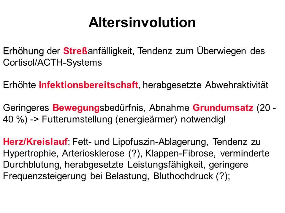 Altersinvolution Erhöhung Erhöhung der Streßanfälligkeit, Tendenz zum Überwiegen des Cortisol/ACTH-Systems Erhöhte Infektionsbereitschaft, herabgesetz