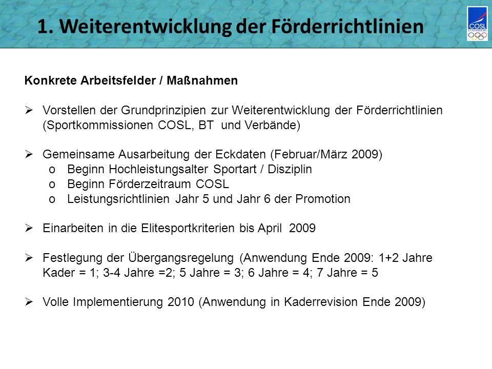 1. Weiterentwicklung der Förderrichtlinien Konkrete Arbeitsfelder / Maßnahmen Vorstellen der Grundprinzipien zur Weiterentwicklung der Förderrichtlini