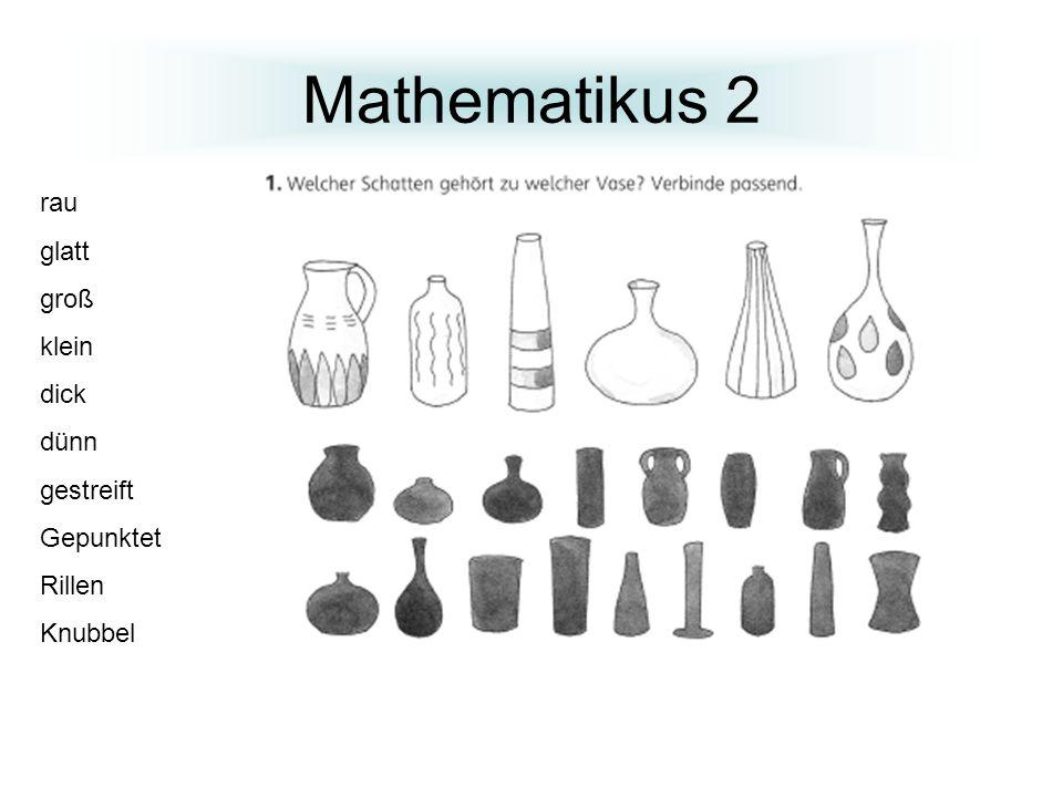 Mathematikus 2 rau glatt groß klein dick dünn gestreift Gepunktet Rillen Knubbel