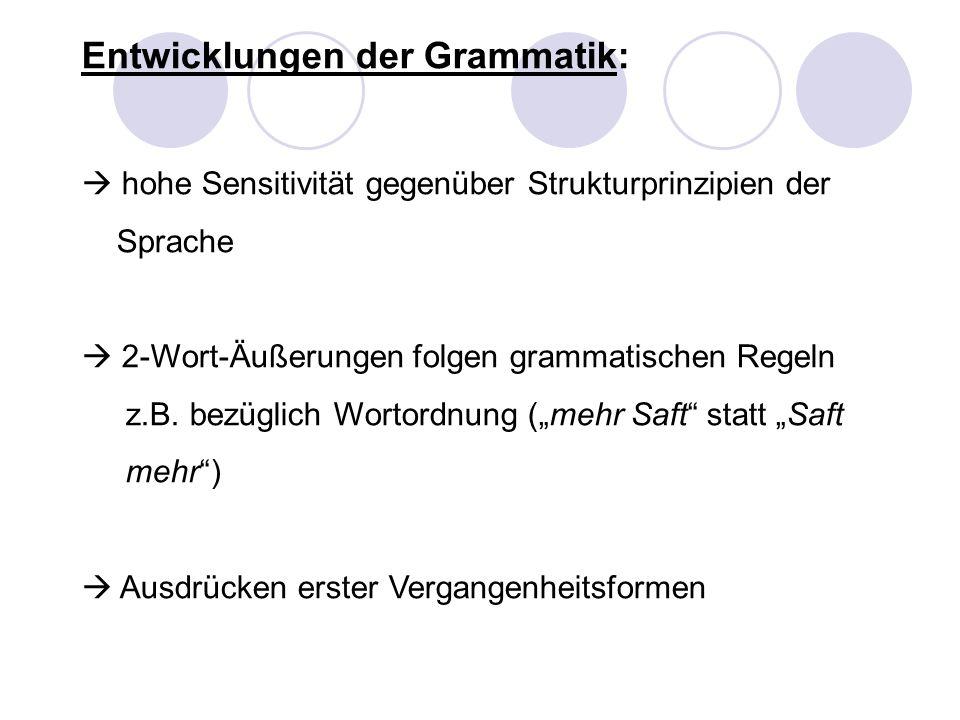 Entwicklungen der Grammatik: hohe Sensitivität gegenüber Strukturprinzipien der Sprache 2-Wort-Äußerungen folgen grammatischen Regeln z.B. bezüglich W