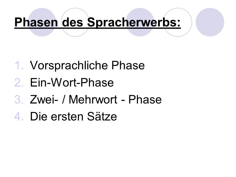 Phasen des Spracherwerbs: 1.Vorsprachliche Phase 2.Ein-Wort-Phase 3.Zwei- / Mehrwort - Phase 4.Die ersten Sätze
