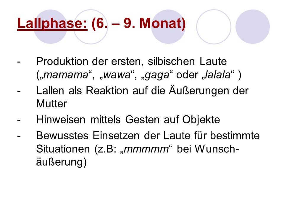 Lallphase: (6. – 9. Monat) -Produktion der ersten, silbischen Laute (mamama, wawa, gaga oder lalala ) -Lallen als Reaktion auf die Äußerungen der Mutt