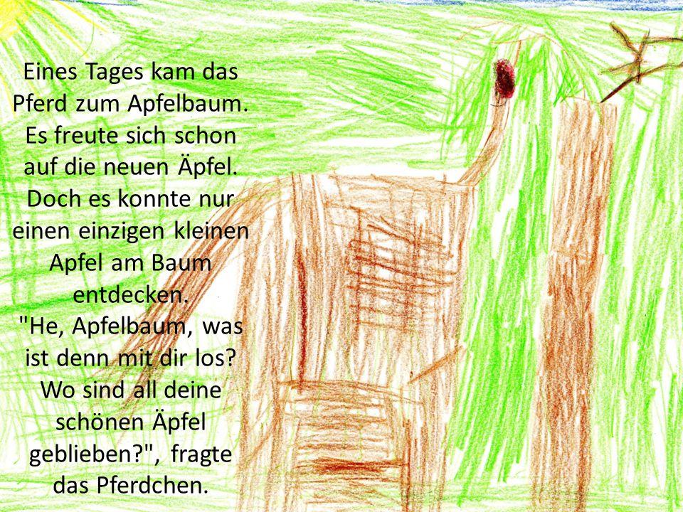Eines Tages kam das Pferd zum Apfelbaum. Es freute sich schon auf die neuen Äpfel. Doch es konnte nur einen einzigen kleinen Apfel am Baum entdecken.
