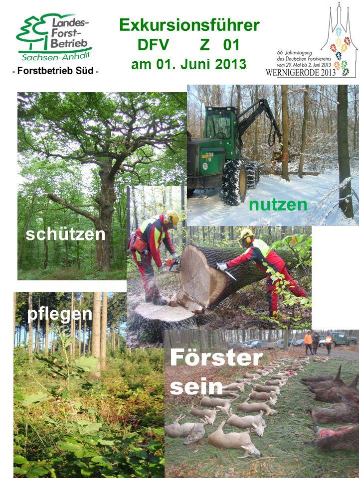 Exkursionsführer DFV Z 01 am 01. Juni 2013 nutzen schützen pflegen Förster sein