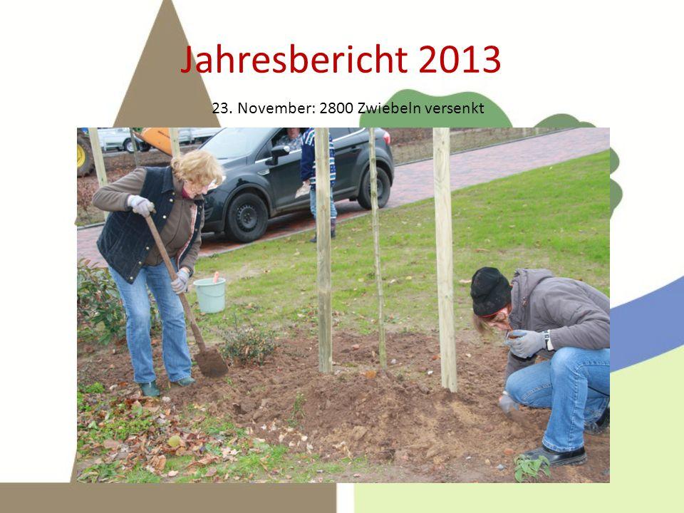 Jahresbericht 2013 23. November: 2800 Zwiebeln versenkt