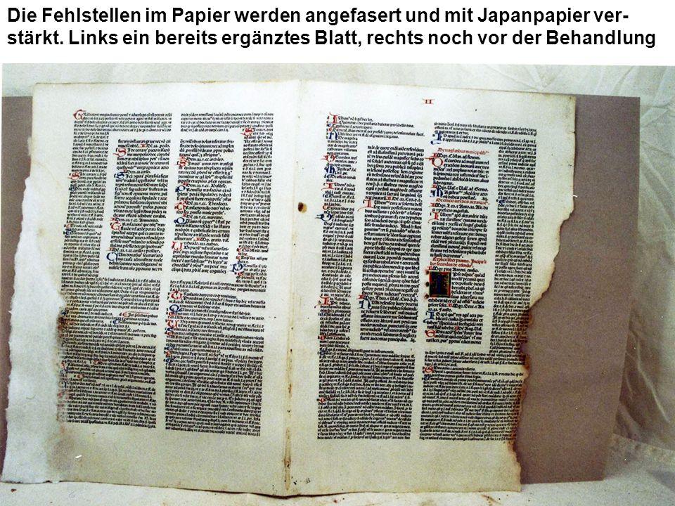 Die Fehlstellen im Papier werden angefasert und mit Japanpapier ver- stärkt. Links ein bereits ergänztes Blatt, rechts noch vor der Behandlung