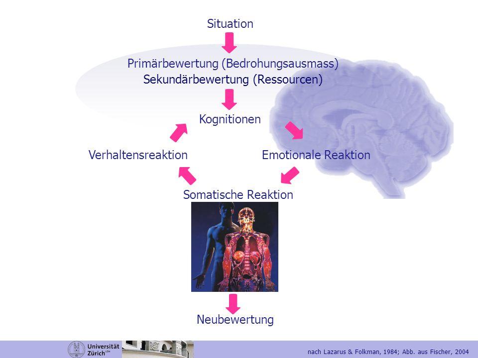 Situation / Stressor Primärbewertung (Bedrohungsausmass) Sekundärbewertung (Ressourcen) Kognitionen Emotionale Reaktion Somatische Reaktion Verhaltensreaktion Neubewertung Akuter oder chronischer Stressor Kritische Lebensereignisse Trauma (Subjektiv erlebte Lebensgefahr, die mit intensiver Furcht, Entsetzen und Hilflosigkeit einhergeht) Stressbewältigung (Coping) Erfolgreiches Coping bedeutet Resilienz