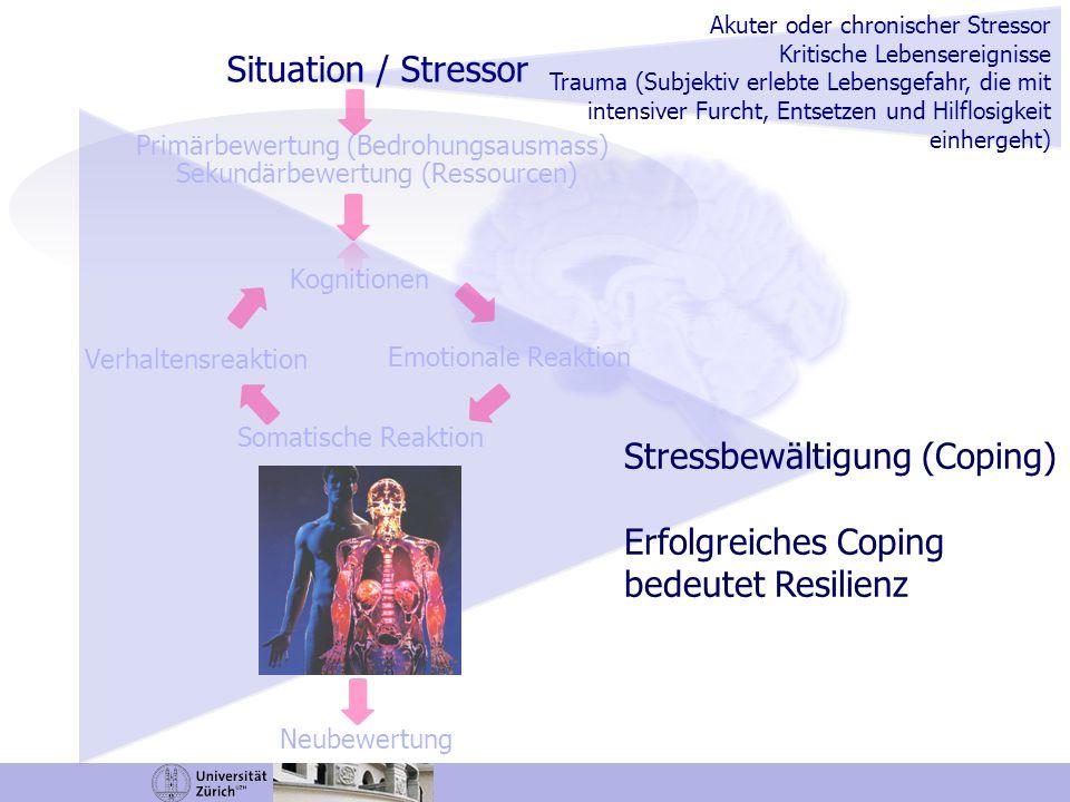 Kognitive Bewertung und physiologische Stressreaktivität Erlebter Stress (PASA-Fragebogen) Die kognitive Bewertung eines Stressors korreliert mit der Cortisolfreisetzung nach Stress (n=81, gesunde Männer) Gaab, Nater, Rohleder & Ehlert, 2005; Campbell & Ehlert, 2012