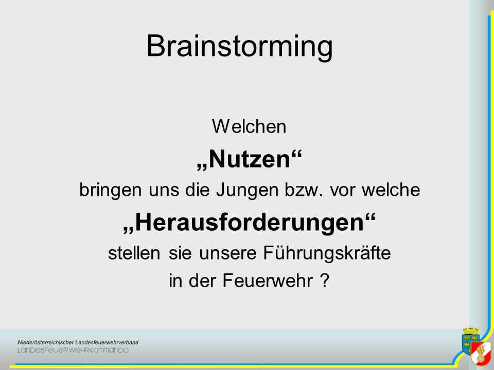 Brainstorming Welchen Nutzen bringen uns die Jungen bzw.