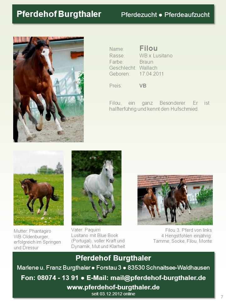 Pferdehof Burgthaler Marlene u. Franz Burgthaler Forstau 3 83530 Schnaitsee-Waldhausen Fon: 08074 - 13 91 E-Mail: mail@pferdehof-burgthaler.de www.pfe
