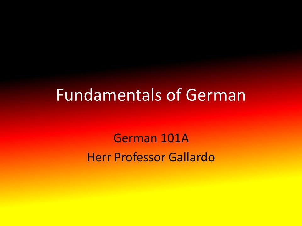 Fundamentals of German German 101A Herr Professor Gallardo