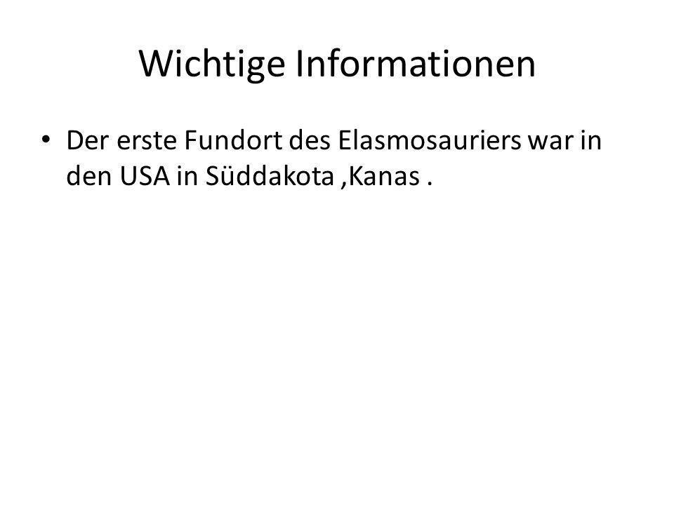 Wichtige Informationen Der erste Fundort des Elasmosauriers war in den USA in Süddakota,Kanas.